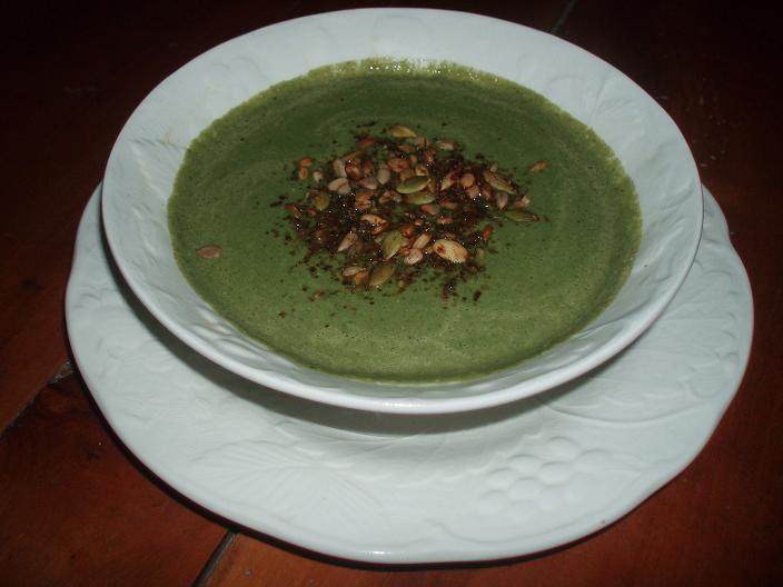 Soupe miracle à l'algue bleu-vert - PB210546