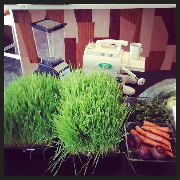 Préparation pour le jus d'herbe de blé aux légumes -2