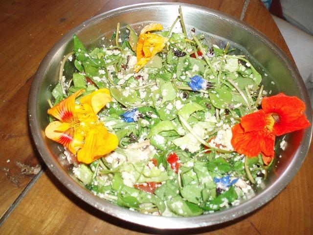 Salade fleurie au chou-fleur