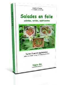 Couverture-Ebook-Salades-en-folie